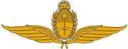 Military Aviation School Emblem