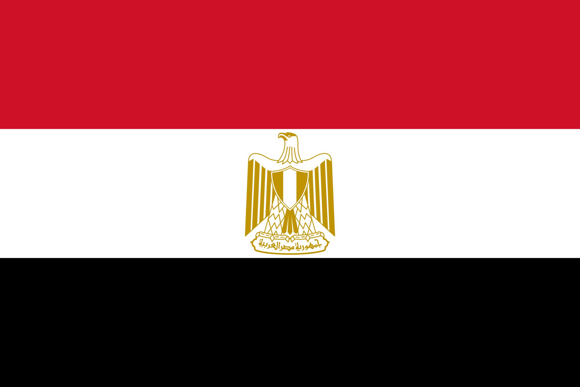 Nasser Military Academy Emblem
