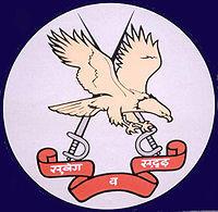 Combat Army Aviation Training School Emblem